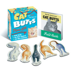 Cat Butts Mini Magnetic Kit