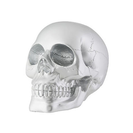 Silver Skull Large