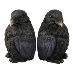Crow Bookends-Corvus