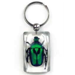 Green Rose Chafer Beetle Keychain