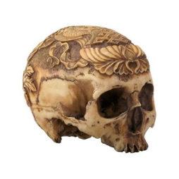 Tibetan Skull With 8 Auspicious Symbols