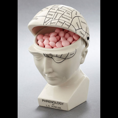 Phrenology Head Container