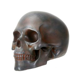 Skull With Rusted Finish