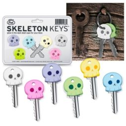Skeleton Keys Keycovers