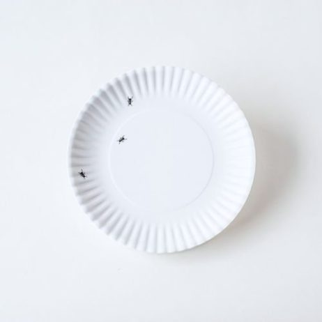 Washable Paper Plate With Ants